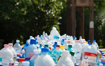 Bin the plastic water bottles